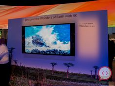 Sony revela pantallas 4K en el CES 2013.