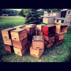 Vintage fruit crates for shelving units.