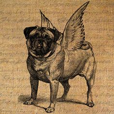 PUG Dog w WINGS Angel Breed Dogs Canine Digital Collage Sheet Download Burlap Fabric Transfer Iron On Pillows Totes Tea Towels No. 5084         December 20, 2014 at 01:43PM