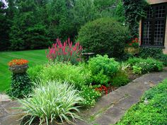 A Southern Gardener -perennial garden
