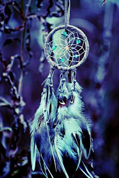 Blue Dream Catcher...To Catch All Your Bleu Dreams~