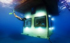 Voyages to the Bottom of the Seas | How to Spend Your Next Vacation Underwater