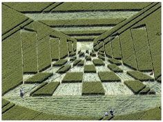 Crop Circles are Back in 3D - http://www.moillusions.com/crop-circles-are-back-in-3d/