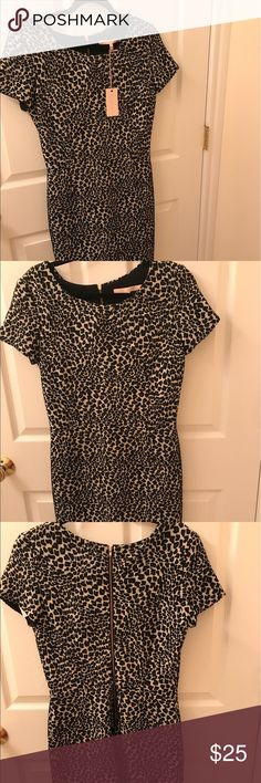 Leopard Print Dress Never worn w tags. Size 8 and made in NYC! hutch Dresses