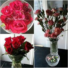 KOTI&SISUTUS. KUKAT...SYKSY&TALVI Neilikat ja Ruusut ovat IHANIA, kauniita ja Tyylikkäitä. SESONGIEN mukaan vaihtuvat KUKAT&TYYLI. Minulla on monia Suosikki kukkia ja kasveja, Sisä- ja ulkotiloissa KOTI SISUTUKSESSA. TYKKÄÄN #koti #sisustus #sesonki #sisustusblogi #talvi  #bloggaja #trend #syksynvärit #kukat #ruusut #neilikat #suosikit #sisätilat #keittiö ❤☺