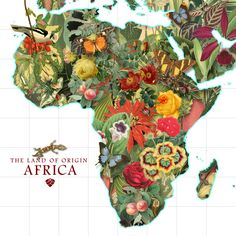 Plant Map of Africa - Art Print by Gary Grayson/Society6