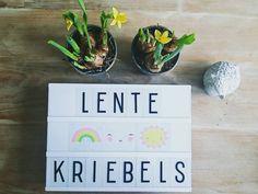 Kom maar door, zon! ☀🌸🐣 #zininvoorjaar #lentekriebels #sunstaywithus #zon #loveit #alittlelovelylightbox #alittlelovelycompany