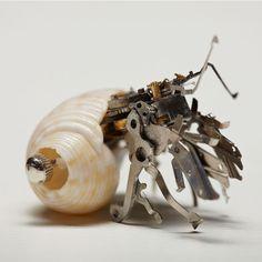 Hermit Crab Watch Parts - Matthew Jones perfect.. cancer  Steampunk.