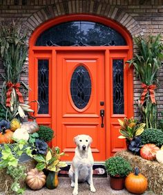 Decorating Shrubs For Front Yard Landscaping Front Door Decorations Ideas Decorating A Christmas Wreath Home Interiors Fall Front Door Decor Designs Pictures