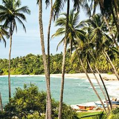 Whether you're looking for a romantic getaway on the secluded beaches of the Andaman Islands off India, a boutique retreat in Mexico or a family-friendly holiday in the Maldives, we've rounded up the hottest spots for some winter sun in 2020 Boutique Retreats, A Boutique, Winter Sun Destinations, Winter Sun Holidays, Stuff To Do, Things To Do, Andaman Islands, Family Friendly Holidays, Secluded Beach