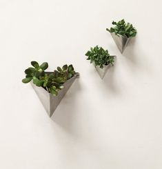 Tessellation // Large // Modern Wall Planter by MethodMfg on Etsy