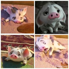 39 best pua i love this pig images in 2019 piglets disney