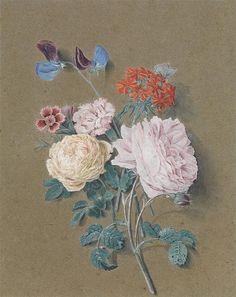 Flores do cais. Aquarela e guache sobre papel anteriormente azul. Alexis Nicolas Pérignon (Nancy, França, 1726 - 1782, Paris, França).