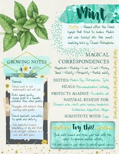green witchcraft 'Mint Grimoire Page' Poster by tysmiha Magic Herbs, Herbal Magic, Plant Magic, Green Witchcraft, Witchcraft Herbs, Magick Spells, Grimoire Book, Witch Herbs, Witchcraft For Beginners