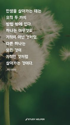 There are only two ways of living your life. One is to live as if nothing is miraculous, and the other is to live as if everything is a miracle. Wise Quotes, Daily Quotes, Study Helper, Korean Writing, Korean Words, Typography, Lettering, Positive Mind, Better Life