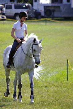 Schooling on the Grass Fairfield Hunt Club June Benefit Show 2014