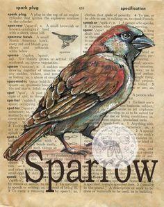 Druck: Sparrow Gemischte Medien Zeichnung auf antike Wörterbuch