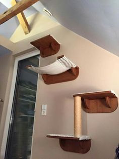 My cat would love something like this.