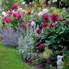 Marvelous 8 Peony Garden Landscaping Ideas For Best Beautiful Garden Inspiration - Peonies Flower Garden Design Idea - Garden Care, Diy Garden, Garden Projects, Shade Garden, Garden Tips, Best Garden, Summer Garden, Cottage Garden Design, Flower Garden Design