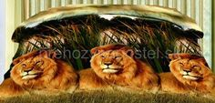 Obojstranné prehozy na posteľ v zelenej farbe s levmi Lion, 3d, Animals, Colors, Leo, Animales, Animaux, Lions, Animal