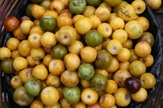 Nances, a delicious and aromatic fruit.
