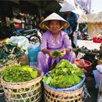 Vietnam country information Vietnam Country, South Vietnam, Vietnamese Language, Country Information, Literacy Rate, Business Visa, Tour Operator, Hanoi, Countries Of The World