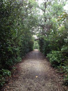 Birch Park, Lauderdale.
