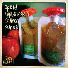 Apple raisin quinoa pouch recipe