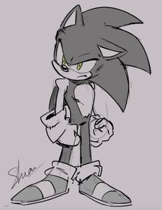 Sonic And Amy, Sonic Fan Art, Sonic Boom, Sonic The Hedgehog, Silver The Hedgehog, Hedgehog Drawing, Hedgehog Art, Sonic Franchise, Sonic Fan Characters