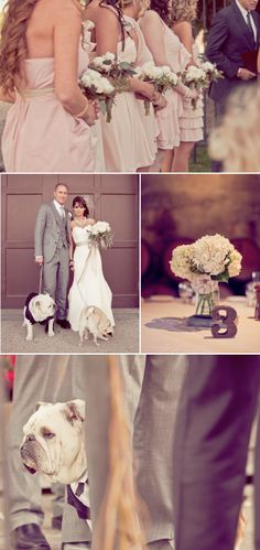 1000+ images about My Alice In Wonderland Wedding on Pinterest | Alice ...