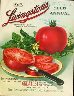 1913 tomato seed packet #doll