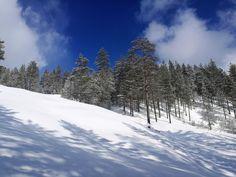 TURISTINA OMALLA SEUDULLA PART III – KOHTEENA ROKUA | Ulla Anttila | Pulse | LinkedIn Winter Sky, Good Company, Wonderful Time, Skiing, Environment, Marvel, Snow, Nature, Outdoor