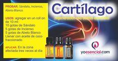cartilago-usa-aceites-esenciales