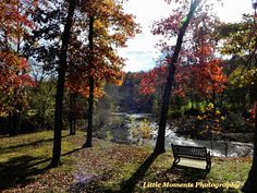 Fall, Colors, Park, Photo, Photography,  Digital Download, Download, Digital, Water, Arkansas by LittleMomentsPhotos on Etsy