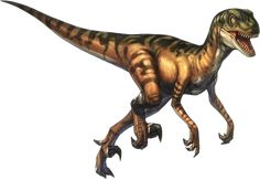 velociraptor - Google zoeken