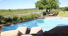 Buckler's Africa Lodge accommodation. Relax at the pool. http://www.accommodation-in-southafrica.co.za/Mpumalanga/Komatipoort/BucklersAfricaLodge.aspx