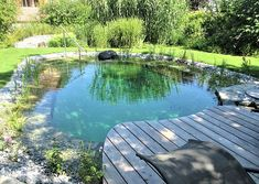 Natural Swimming Ponds, Natural Pond, Swimming Pools Backyard, Lap Pools, Indoor Pools, Pool Decks, Small Backyard Pools, Ponds Backyard, Small Pools