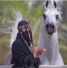 Arabian Horse Big Horses, Funny Horses, White Horses, Pretty Horses, Horse Love, Egyptian Arabian Horses, Arabian Knights, Most Beautiful Animals, Beautiful Horses