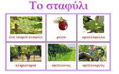 Αποτέλεσμα εικόνας για Διονυσος-σταφυλι τρυγος στο νηπιαγωγειο Wine, Google