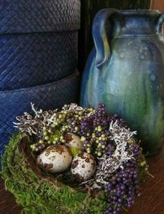 Berries Lichen Bird Nest & Eggs