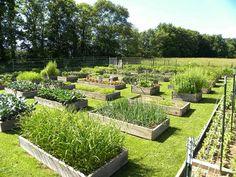 Beautiful garden pics Mother Earth News