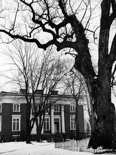 size: Photographic Print: Building on Campus of St. John's College, Annapolis, Maryland by Alfred Eisenstaedt : Subjects St Johns College, Annapolis Maryland, Digital Technology, Professional Photographer, Find Art, Framed Artwork, Building, St John's, Catalog