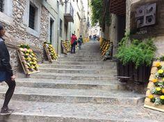 temps de flors en Girona 2016