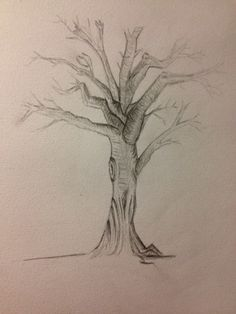 Day 17: Favourite Plant. Trees are the most beautiful plant. By Teena McDougall. 30 Day Drawing Challenge, Most Beautiful, Trees, Drawings, Plants, Art, Art Background, Tree Structure, Kunst