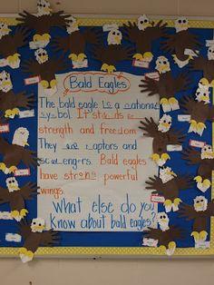 Bald Eagle Bulletin Board Display