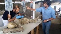 il restauro dei calchi di Pompei