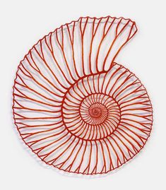 'Ammonite' polyester thread and pins on paper. By Meredith Woolnough