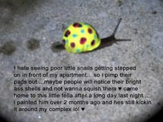 Haha! I want to find a snail now and see if it survives by me painting it! Lol