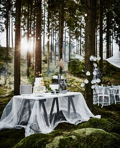 A cake table at a forest wedding with stacked white plates on a table next to coffee cups hanging on small tree branches