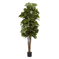 nearly natural 6-ft. Fiddle Leaf Fig Tree, Green